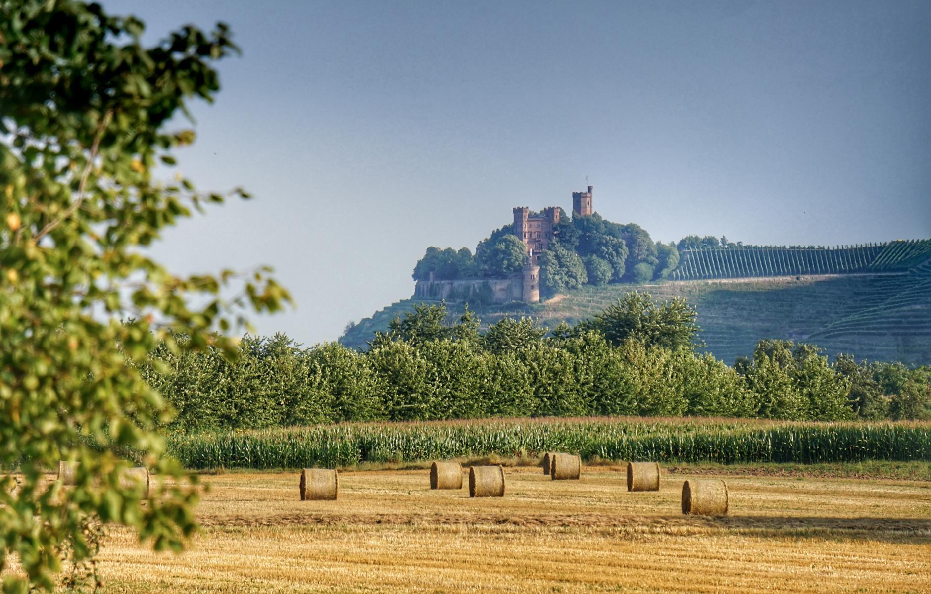 Titelbild Schloss Ortenberg